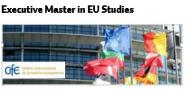 MasterExecutive in EU Studies